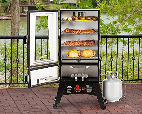best gas smoker; It's dual door design is a feature that creates value
