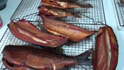 How to Smoke Trout; You Can Enjoy Smoked Trout with Your Family & Friends
