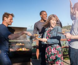 barbecue at Home: best option for partying or family gatherings