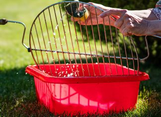 How to Clean a Grill: A Guide to a Spotless Grill!